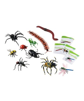 Insect and Bug Set