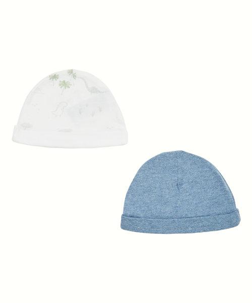 Dinosaur Hats - 2 Pack