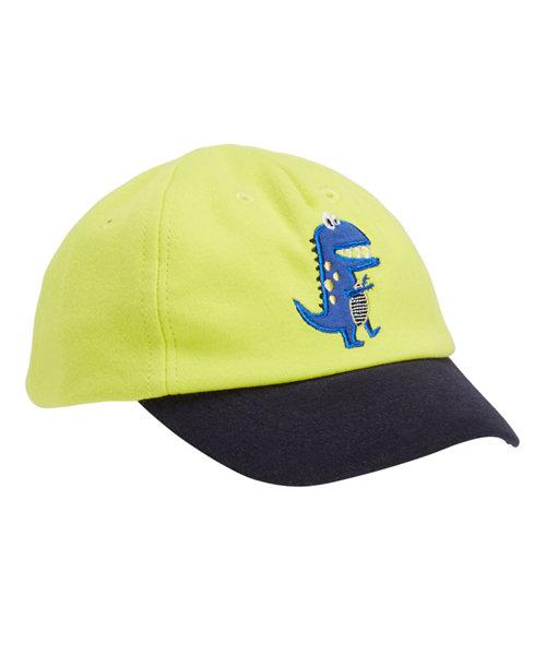 Dinosaur Cap