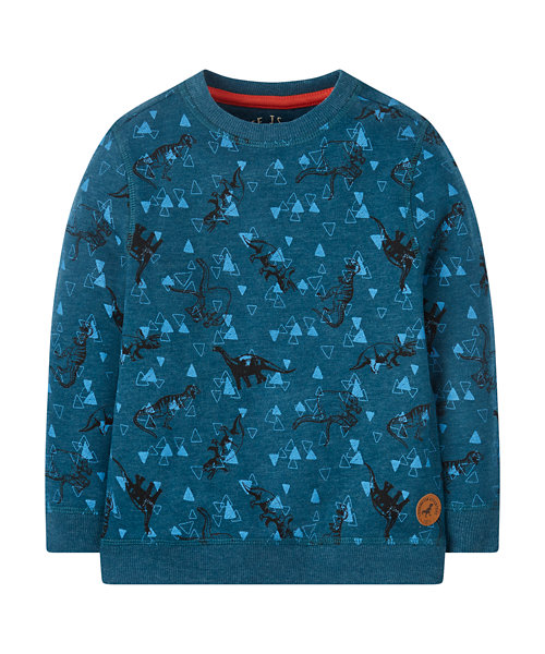 Blue Dinosaur Sweat Top