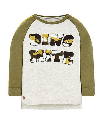 Raglan Dinosaur Dinomite T-Shirt