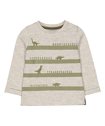 Mothercare Oatmeal Stripe Dinosaur Species T-Shirt