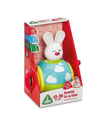 elc bunny in a box