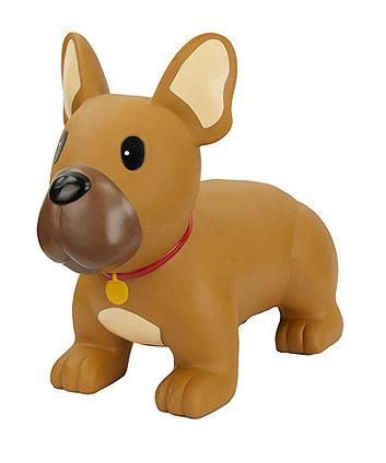 Hop-along dog