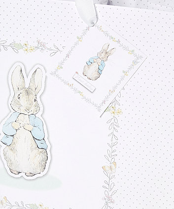 peter rabbit gift bag