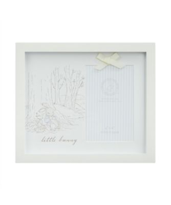 peter rabbit frame