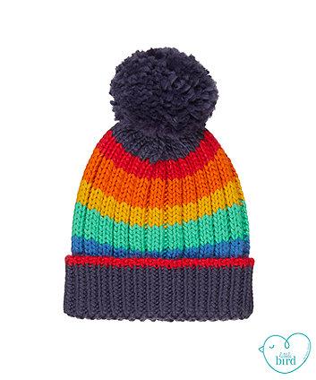 little bird rainbow hat