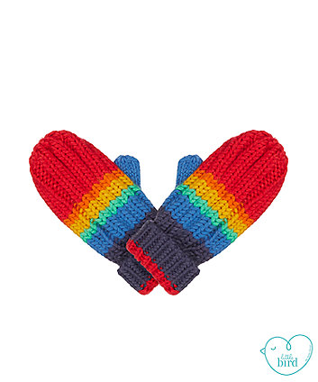little bird rainbow mittens