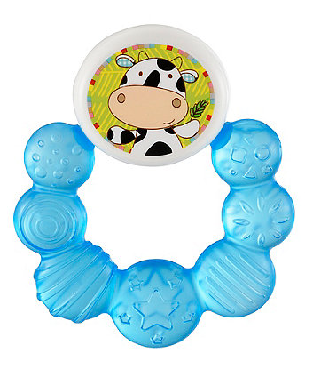 Early Learning Centre Blossom Farm Water Teether