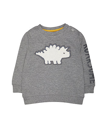 Grey Roarsome Dinosaur Sweat Top
